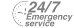 24/7 Emergency Service Pest Control in Morden Park, Morden, SM4. Call Now! 020 8166 9746